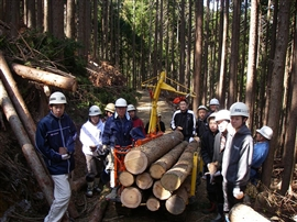 中学生の林業体験_e0002820_17155717.jpg