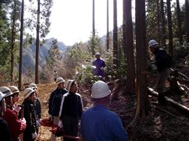 中学生の林業体験_e0002820_174372.jpg