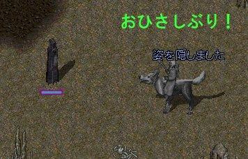 b0089730_16385033.jpg