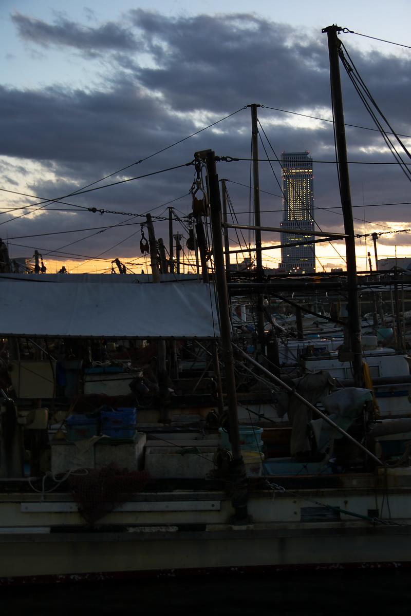 大阪 泉佐野漁港_f0021869_1363121.jpg
