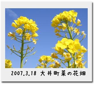 b0024183_1816173.jpg