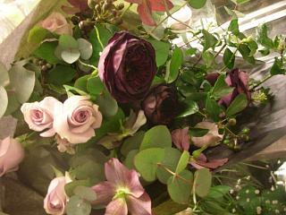 薔薇 ザ・プリンス_c0102228_20251622.jpg