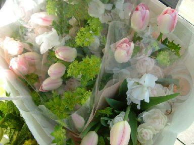 オークリーフ(卒園式の花束)_f0049672_1713526.jpg