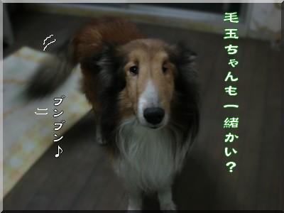 b0078073_22481428.jpg