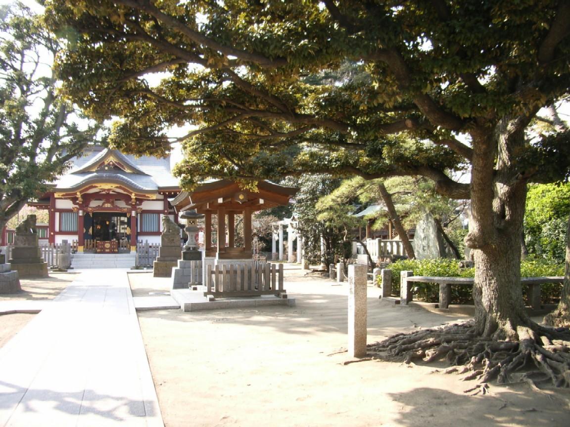 東京は都会だ_d0091021_22533882.jpg