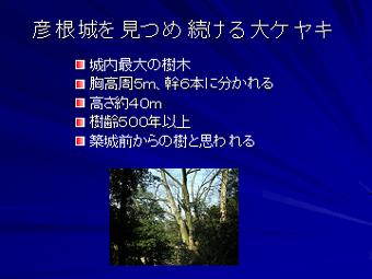 d0087325_19103885.jpg