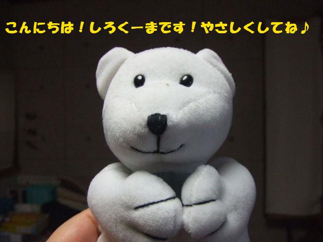 f0059334_946557.jpg