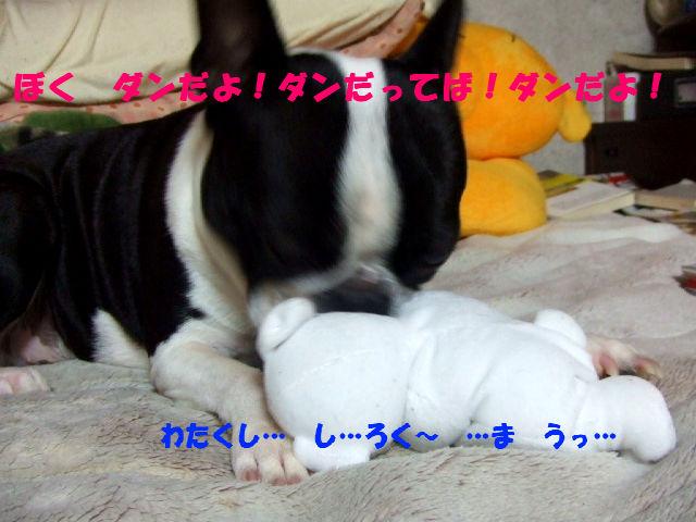 f0059334_9514050.jpg