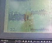 f0135385_1344744.jpg