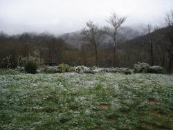 3月の雪_f0106597_17543419.jpg