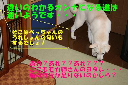 f0121712_13374811.jpg