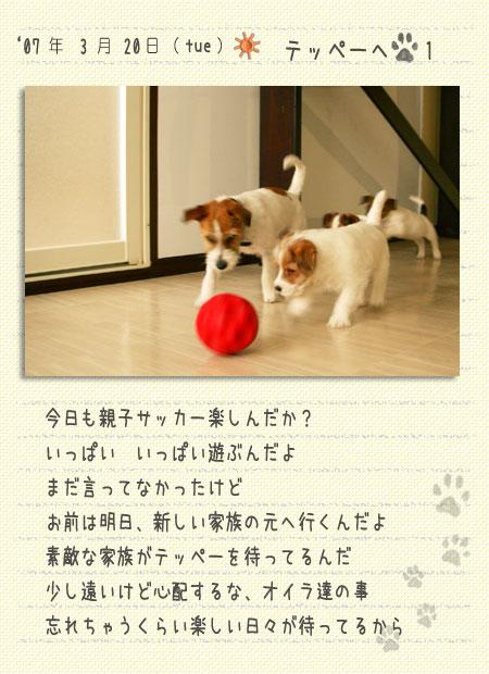 b0040323_0585690.jpg