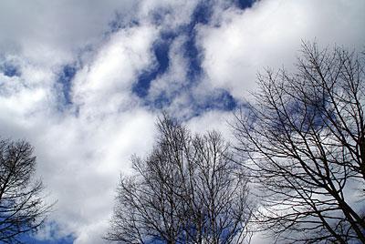 氷点下14℃でも空は春色になりました_d0102327_2052378.jpg