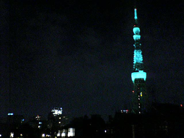 都内散歩 東京タワーGreening and lighting the future_a0016730_226351.jpg