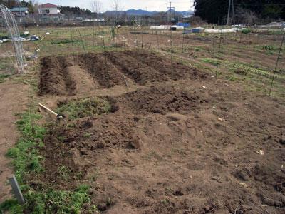 農作業開始_c0063348_23511389.jpg