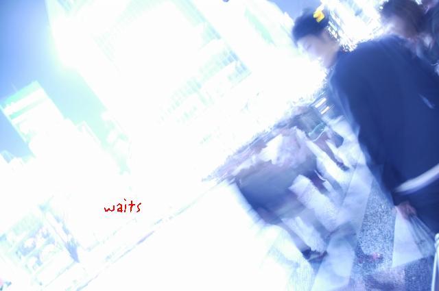 d0010052_2315660.jpg