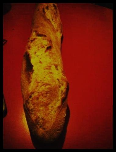 ■街角のパン(PARIS)_a0014299_173496.jpg