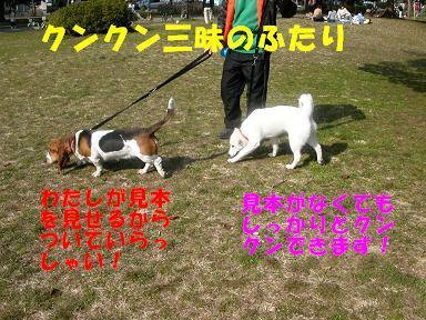 f0121712_1651851.jpg