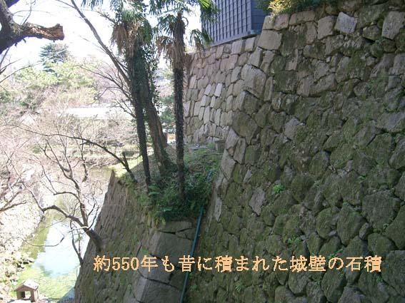 f0121946_15594936.jpg