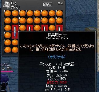 b0074747_1151036.jpg