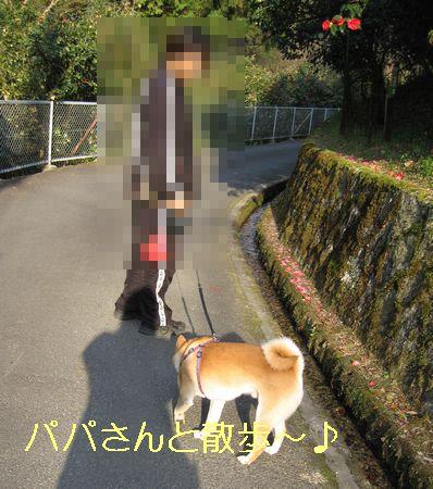 e0085147_2523050.jpg