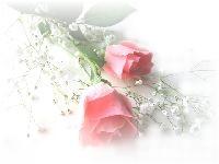 a0049567_8454159.jpg