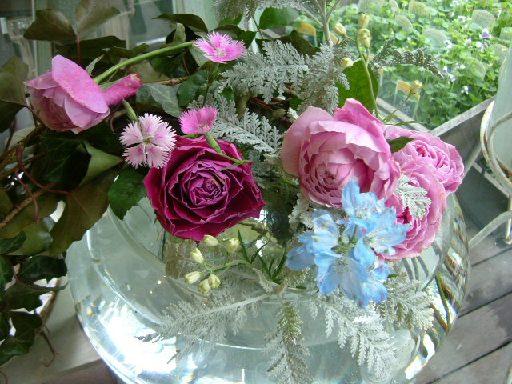 オークリーフ(桜の蕾も膨らんで)_f0049672_1216156.jpg