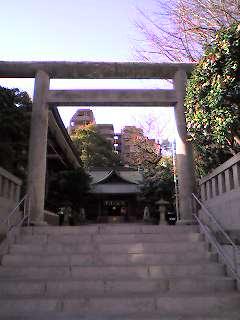 焔と饂飩、神社と神社、椿から椿。_d0091021_1241354.jpg