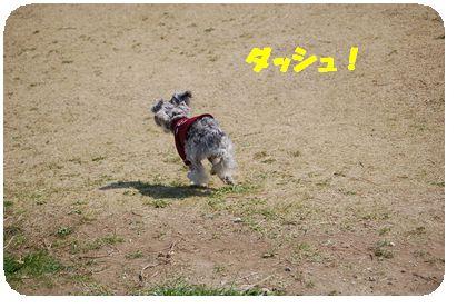 d0048951_13505567.jpg