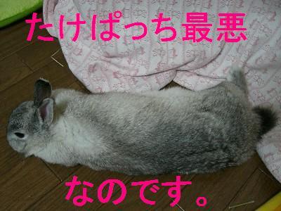 f0104057_19434961.jpg