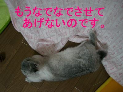 f0104057_19442347.jpg