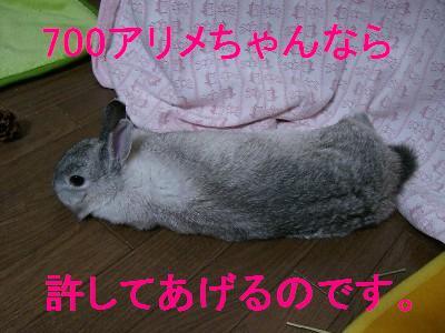f0104057_19473618.jpg