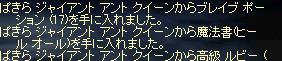 f0043259_21402638.jpg