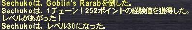 f0105408_11462058.jpg