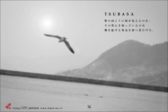 TSUBASA_a0054755_23152178.jpg