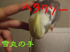 b0082757_0475654.jpg
