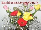 b0067569_1722596.jpg
