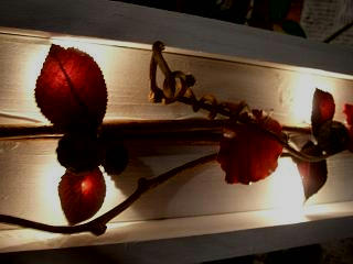花イベントのお知らせ_c0102228_16313055.jpg