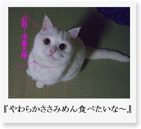 b0097145_015391.jpg