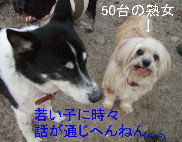 f0053952_1371965.jpg