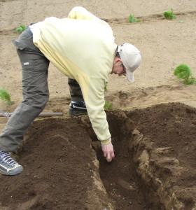 家庭菜園入門 ジャガイモ植え付けと葉物の種まき_e0047859_15333494.jpg