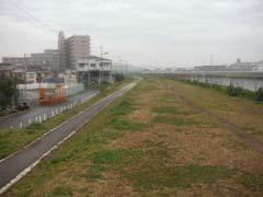 b0042462_2012384.jpg