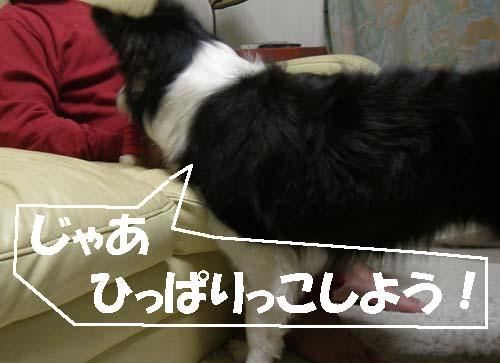 f0114893_21452100.jpg