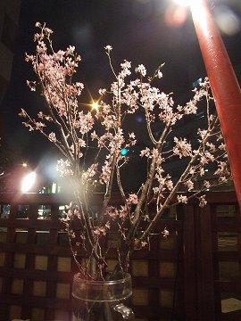 3月25日(2) ダイニングMOKO_a0036513_15371370.jpg