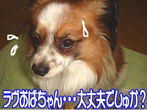 f0011845_115268.jpg
