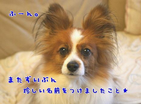 d0013149_01398.jpg