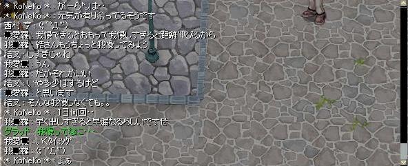 b0109474_3361527.jpg