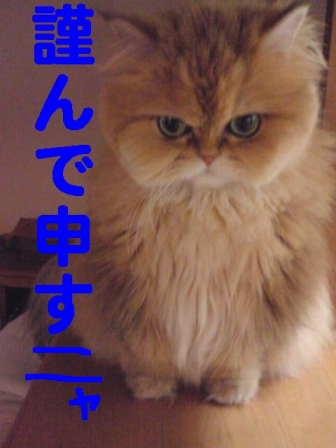 f0138304_1852321.jpg