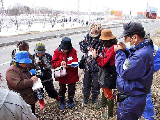 3月27日(火):植物を知ろう会始動_e0062415_1731351.jpg