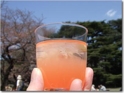 3月26日桜のゼリー